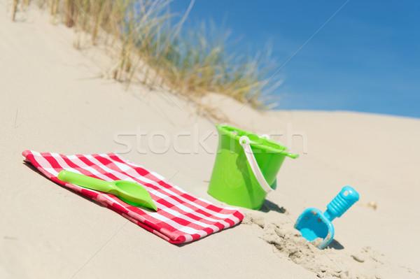Zabawki piknik trawy charakter krajobraz niebieski Zdjęcia stock © ivonnewierink