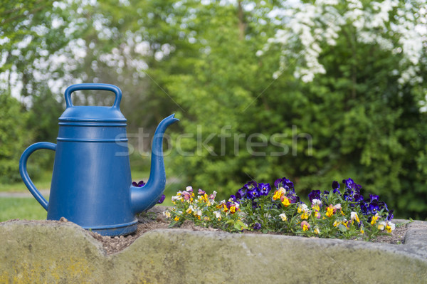 Watering can and plants Stock photo © ivonnewierink