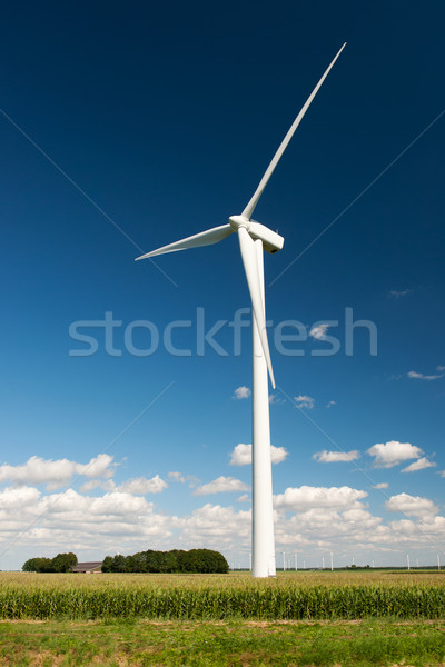 Wind turbines in agriculture landscape Stock photo © ivonnewierink