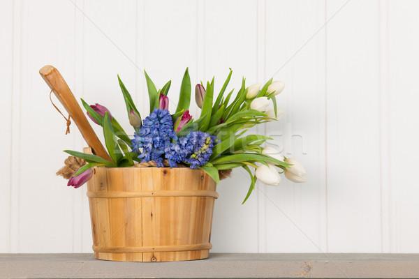 Sauna cubo ramo flores bienestar interior Foto stock © ivonnewierink