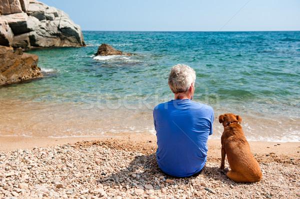 Człowiek psa plaży starszych lata wody Zdjęcia stock © ivonnewierink