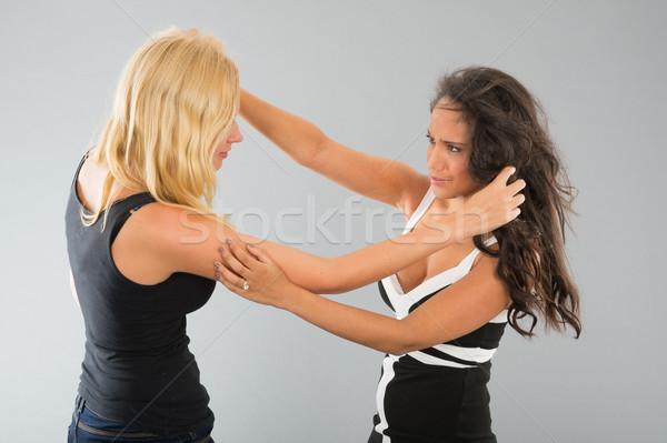 Fete luptă lupta gri prietenii ţipa Imagine de stoc © ivonnewierink