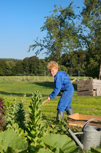 фермы мальчика прополка растительное саду продовольствие Сток-фото © ivonnewierink