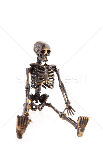 Halloween skeleton Stock photo © ivonnewierink
