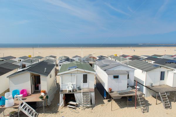 Spiaggia fila legno mare estate Foto d'archivio © ivonnewierink