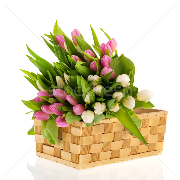 Pink and white tulips in basket Stock photo © ivonnewierink