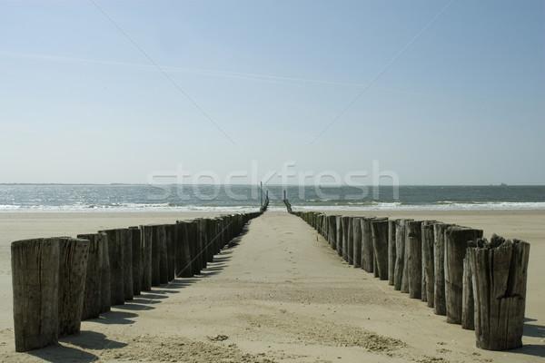 перерыва волны пляж воды песок Сток-фото © ivonnewierink