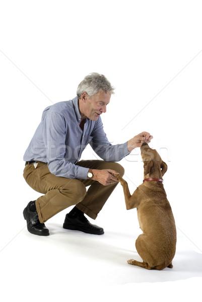 Obediencia hombre formación pequeño perro marrón pelo Foto stock © ivonnewierink
