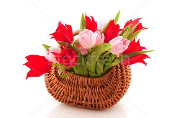 Canne panier tulipes plein mixte printemps Photo stock © ivonnewierink
