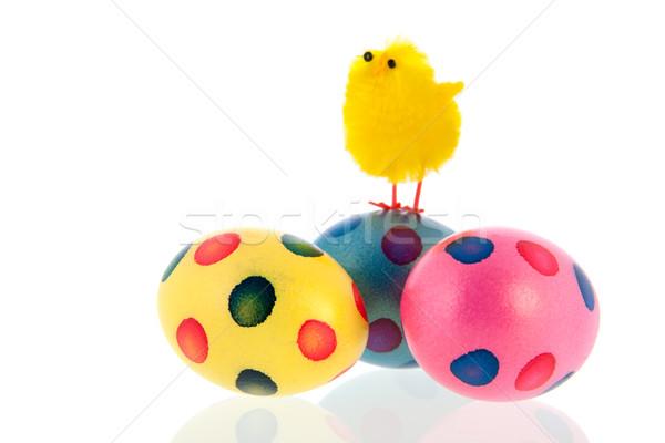 Пасху яйца куриного top Сток-фото © ivonnewierink