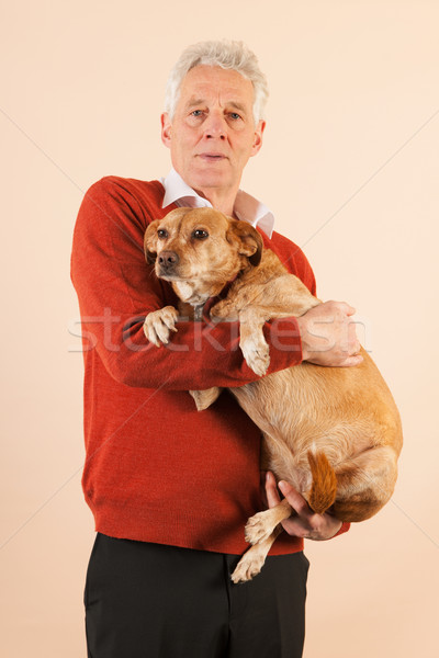 Starszy człowiek psa portret starych Zdjęcia stock © ivonnewierink