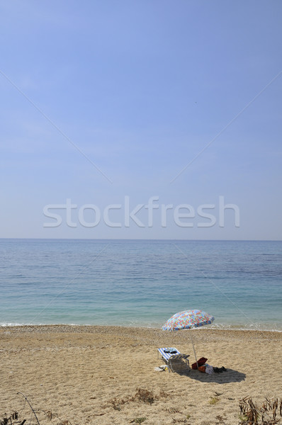 Parasol at the beach Stock photo © ivonnewierink