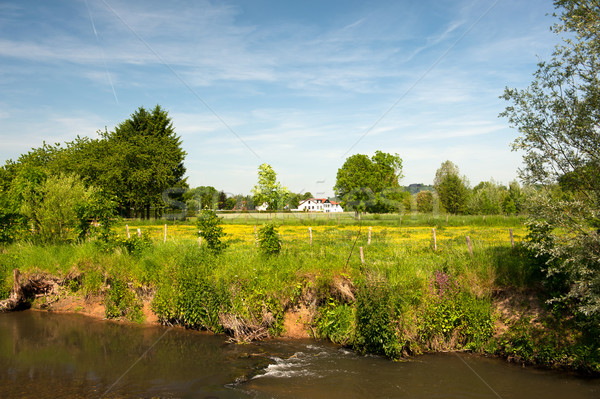 Dutch landscape with residential and river Stock photo © ivonnewierink
