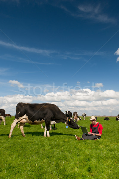 Young farmer with laptop in field with cows Stock photo © ivonnewierink
