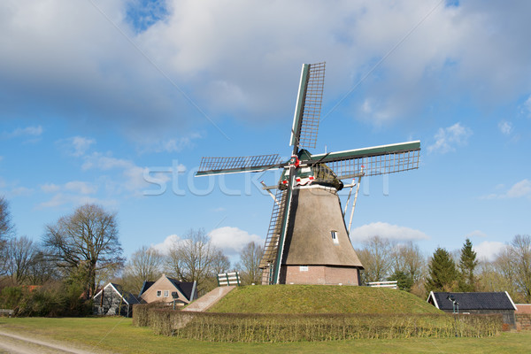 голландский Windmill мало деревне Sunshine Сток-фото © ivonnewierink