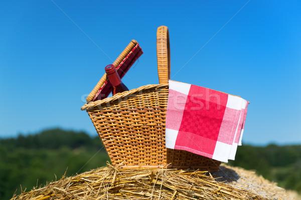 Piknik sepeti yaz zaman gıda şarap şişe Stok fotoğraf © ivonnewierink