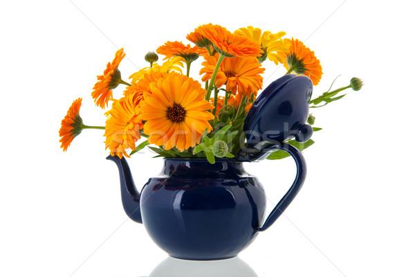 Narancs kék tea edény háttér fehér Stock fotó © ivonnewierink