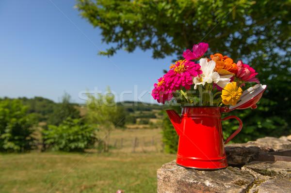 Boeket tuin bloemen Rood glazuur thee Stockfoto © ivonnewierink