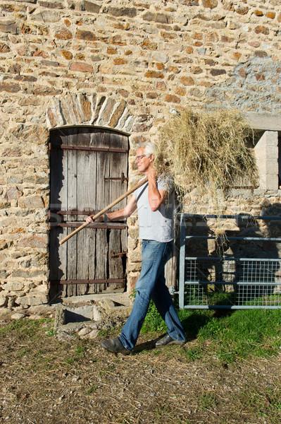 Farmer with hay Stock photo © ivonnewierink