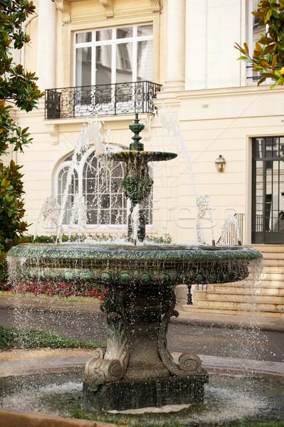 Fountain in Paris Stock photo © ivonnewierink