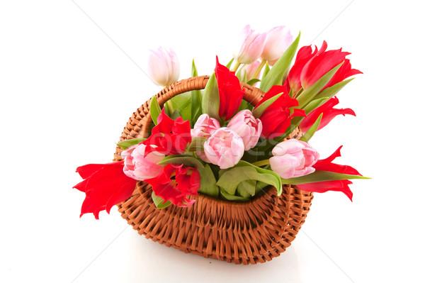 Wicked cane basket tulips Stock photo © ivonnewierink