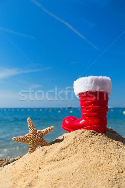 Zeester Rood boot grappig kerstman Stockfoto © ivonnewierink