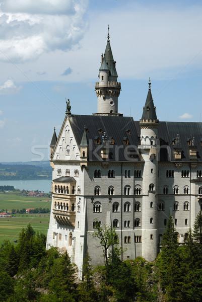 Castle Neuschwanstein Stock photo © ivonnewierink