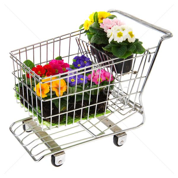 Bevásárlókocsi virágok tele háttér fém nyár Stock fotó © ivonnewierink