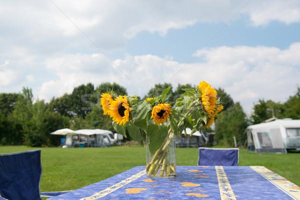 Virágok táborhely köteg napraforgók váza nyár Stock fotó © ivonnewierink