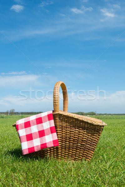 Piknik sepeti doğa çim açık yaz alan Stok fotoğraf © ivonnewierink