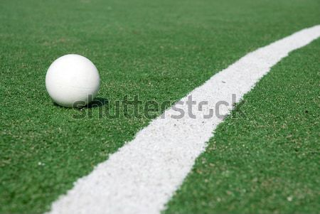 Hockey artificial hierba verde jugar deporte verde Foto stock © ivonnewierink