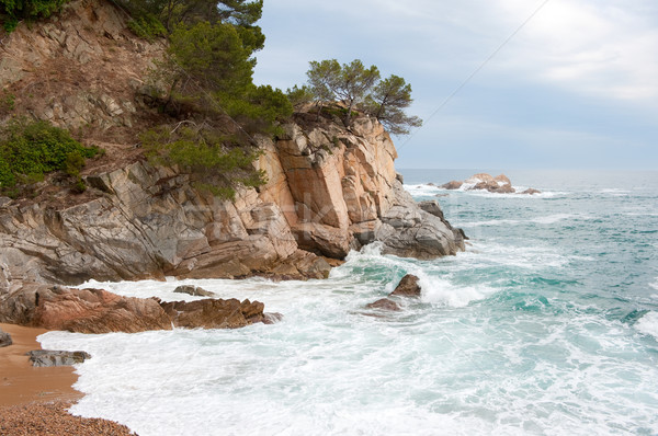 Spanish coast Stock photo © ivonnewierink