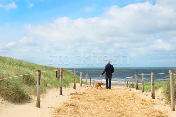 Beach and dunes on Dutch Texel Stock photo © ivonnewierink