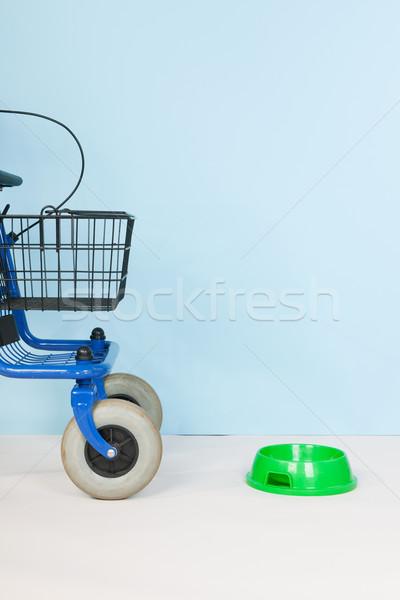 Personnes âgées animaux de compagnie bleu alimentaire bol utilisé Photo stock © ivonnewierink