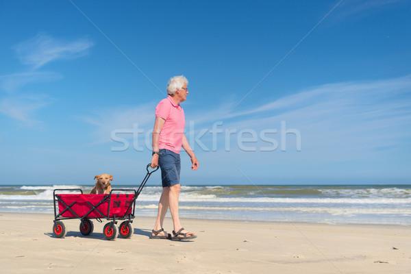 Senior man lopen hond strand winkelwagen Stockfoto © ivonnewierink