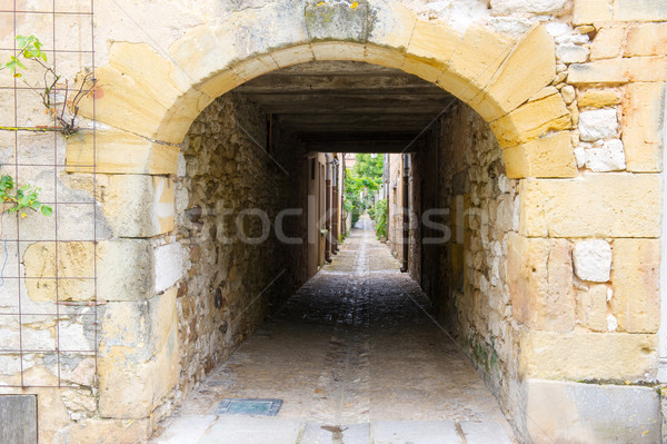 gateway in France Stock photo © ivonnewierink