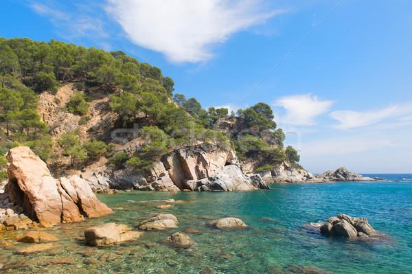 Coast Costa Brava in Spain Stock photo © ivonnewierink