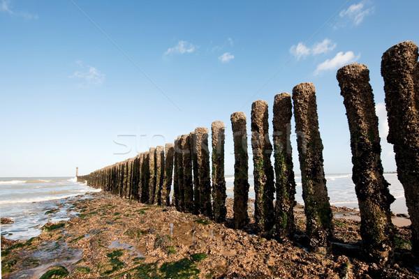 Poles at the beach Stock photo © ivonnewierink