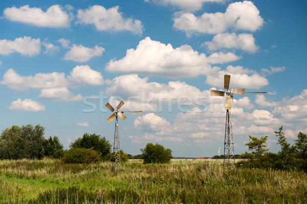 пейзаж голландский лет облака природы власти Сток-фото © ivonnewierink