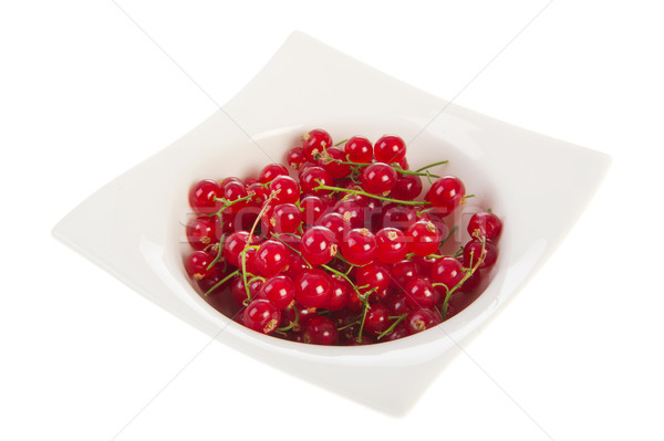 White bowl with red currants Stock photo © ivonnewierink