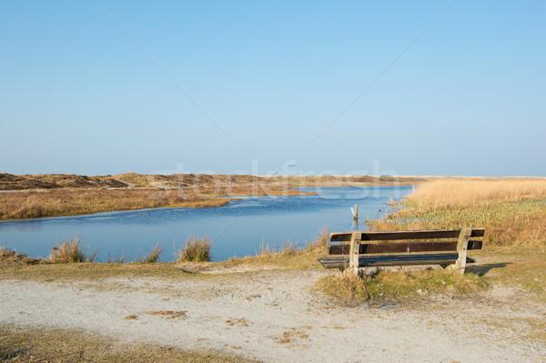 Loodsmansduin at Dutch Texel Stock photo © ivonnewierink
