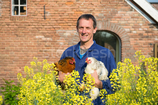 Farmer with chickens Stock photo © ivonnewierink