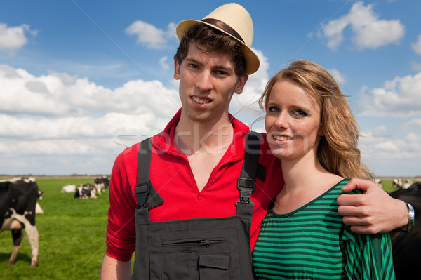 Typique paysage agriculteur couple vaches Photo stock © ivonnewierink