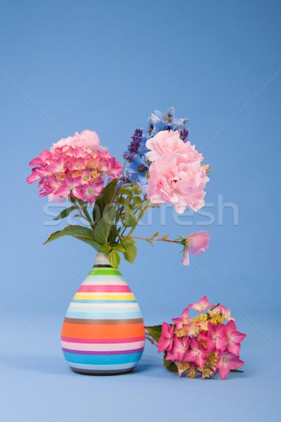 Flowers on blue background Stock photo © ivonnewierink