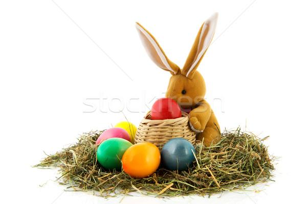 Pasen haas kleurrijk eieren mand stro Stockfoto © ivonnewierink