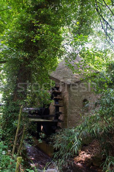 воды мельница голландский старые лес Сток-фото © ivonnewierink