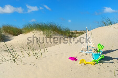 Beach with sand and toys Stock photo © ivonnewierink