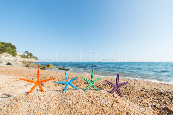 Starfishes at the beach Stock photo © ivonnewierink