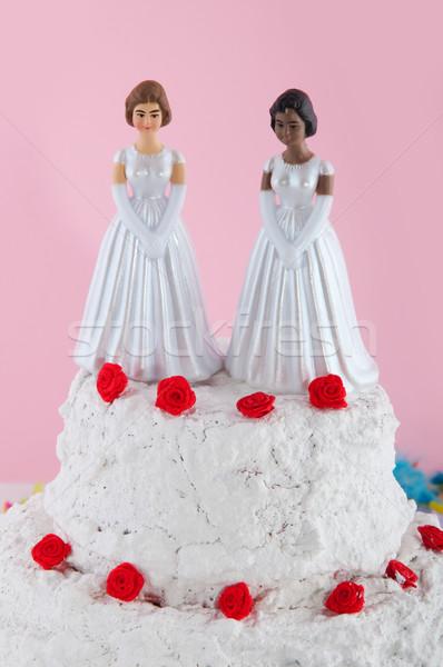 Lesbianwedding couple Stock photo © ivonnewierink