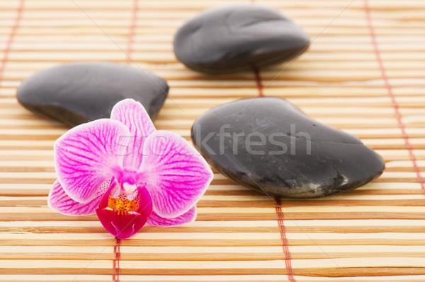Orchidea caldo pietre rosa bambù fiore Foto d'archivio © ivonnewierink